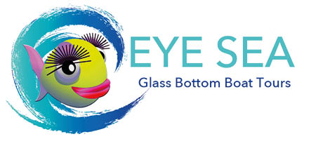 eye-sea-logo